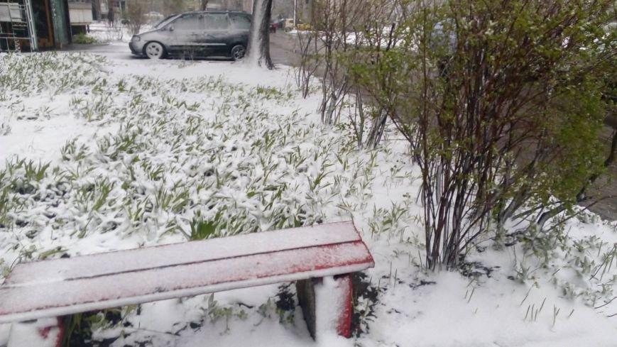 Цветы под снегом, или Зима весной: какое оно, 21 апреля, в разных городах Украины (ФОТОРЕПОРТАЖ+КАРТА), фото-5