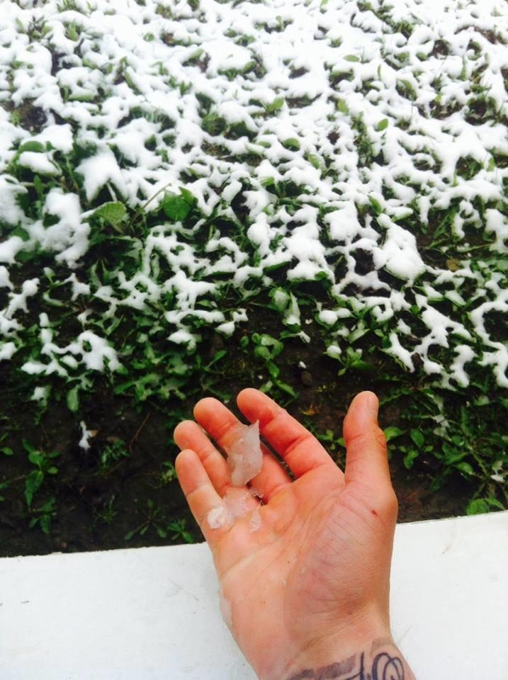 Цветы под снегом, или Зима весной: какое оно, 21 апреля, в разных городах Украины (ФОТОРЕПОРТАЖ+КАРТА), фото-4