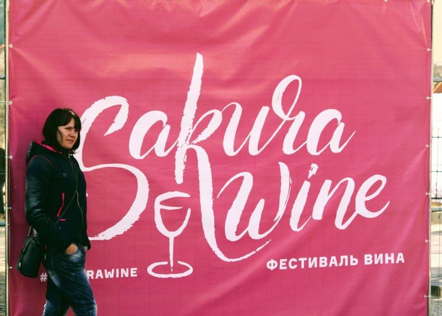 Ужгород п'є вино із сакури: фоторепортаж, фото-28
