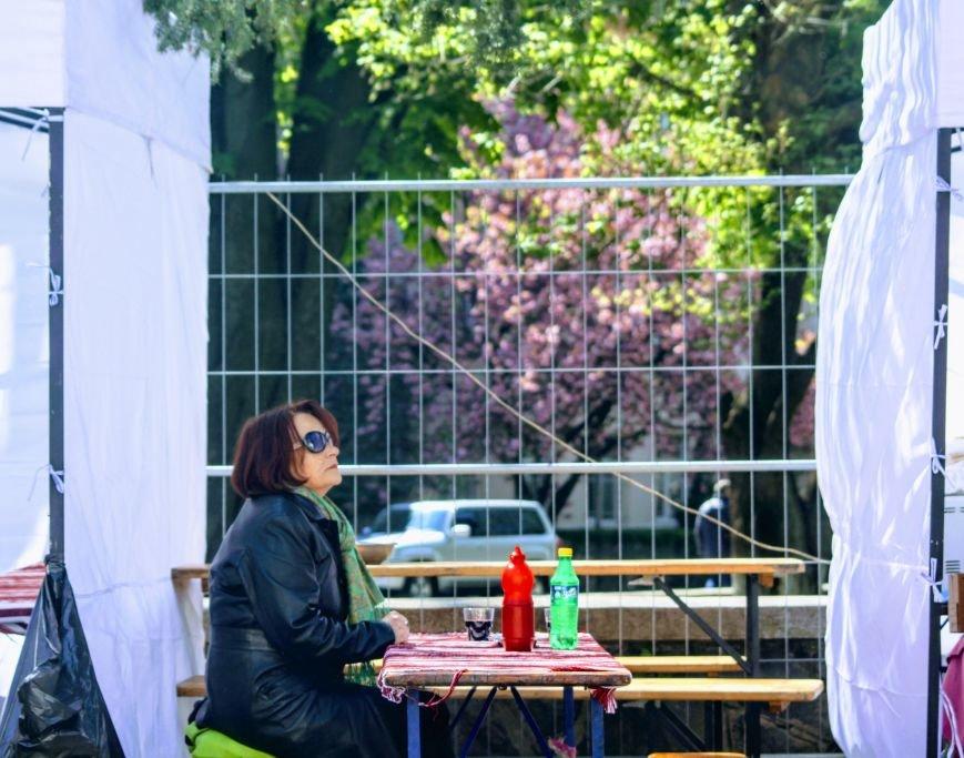 Ужгород п'є вино із сакури: фоторепортаж, фото-9
