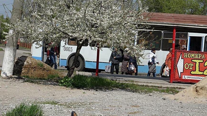 """Водой из огромной лужи на ул.Флотской решили затопить поселок """"Бригантина"""" (ФОТО), фото-11"""
