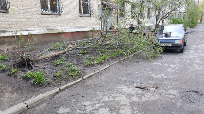 Новомосковск 0569 ветки 7