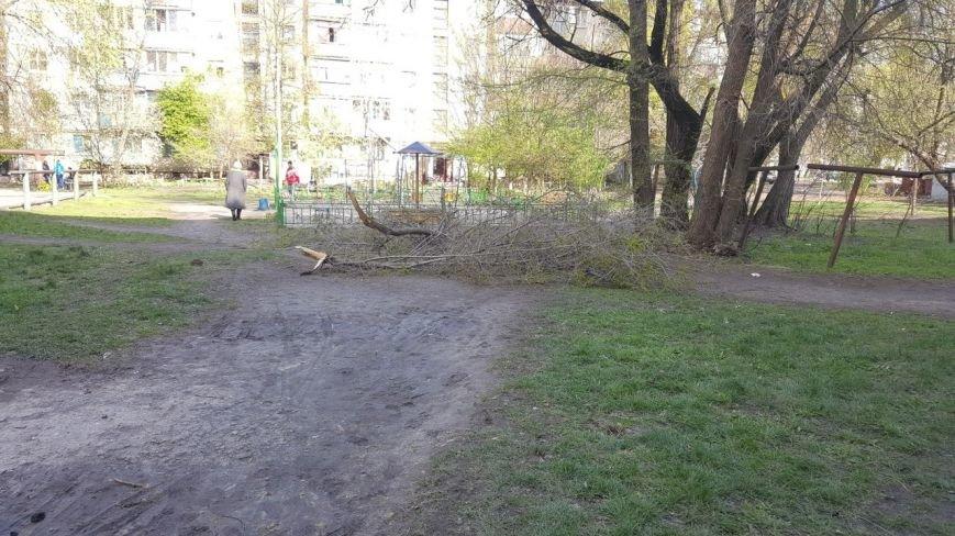 Новомосковск 0569 ветки 14