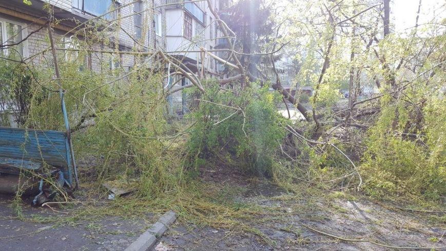 Новомосковск 0569 ветки 9