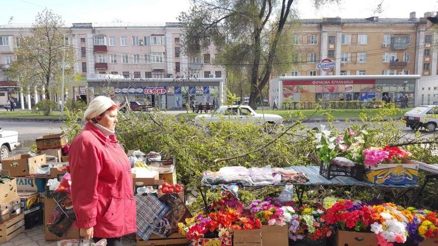 Новомосковск 0569 ветки 4