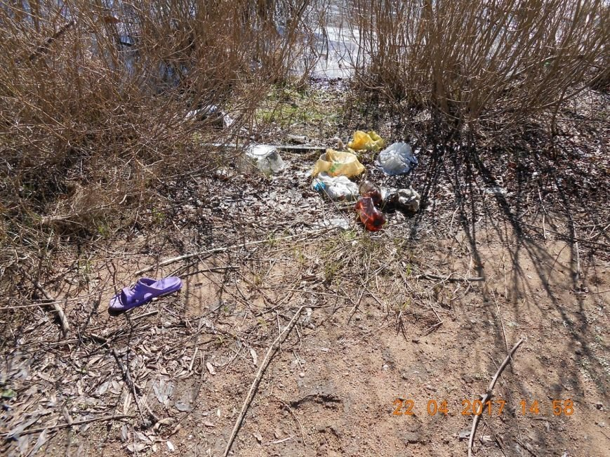 «За день загрузили 12 контейнеров мусора». Как рыбаки-волонтеры убирали берег Западной Двины. ФОТО, фото-8