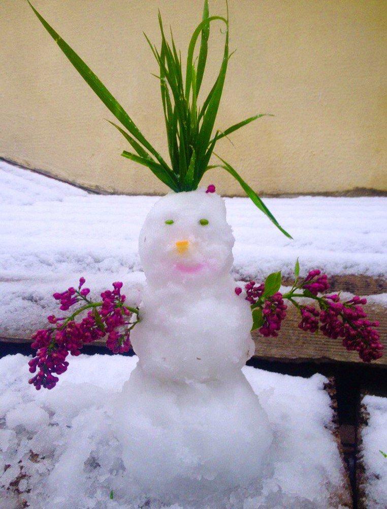 Крымчане в соцсетях хвастают апрельскими снеговиками (ФОТОФАКТ), фото-3