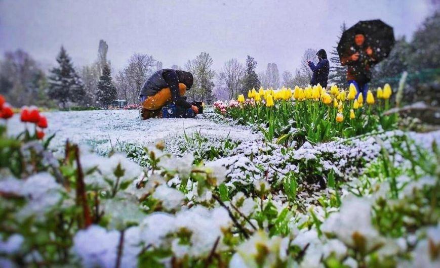 Крымчане в соцсетях хвастают апрельскими снеговиками (ФОТОФАКТ), фото-6