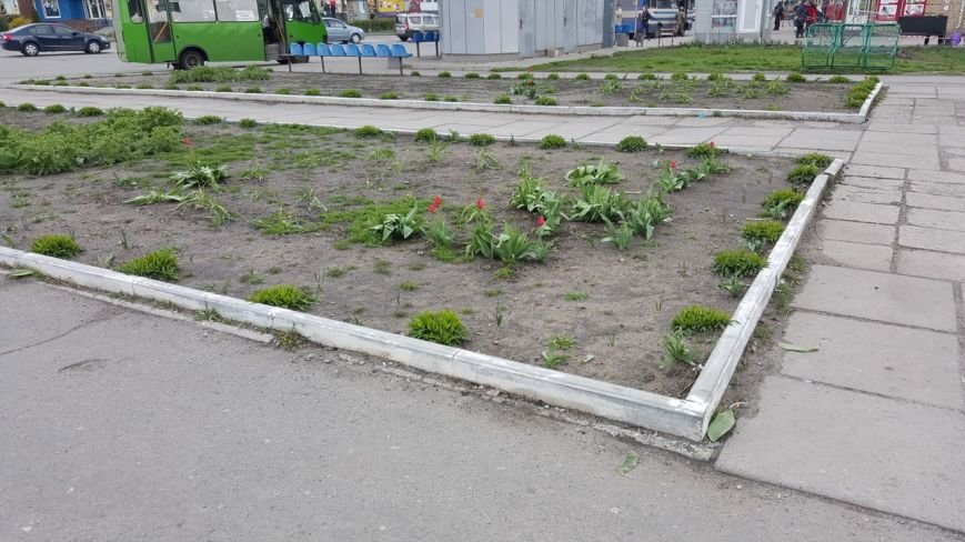 Новомосковск 0569 т 4