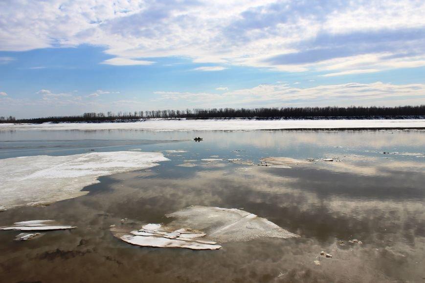 Вот это уровень! Вода в Оби за сутки прибыла на 17 сантиметров, фото-2