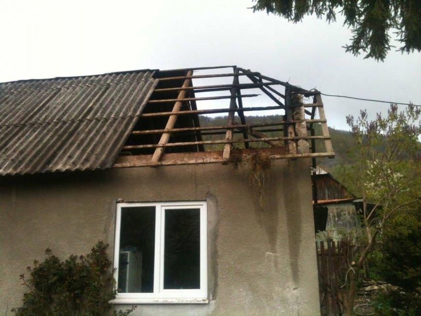 Як місцеві мешканці допомагали вогнеборцям пожежу на Іршавщині гасити: фото, фото-1