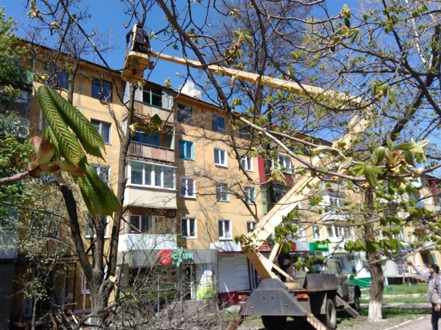 В Краматорске ликвидируют аварийные деревья, фото-3