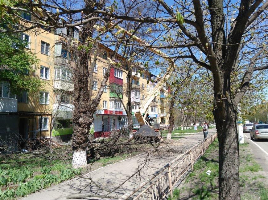 В Краматорске ликвидируют аварийные деревья, фото-2