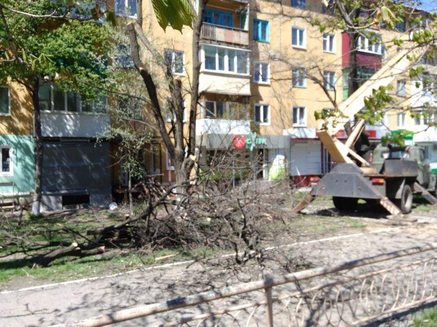 В Краматорске ликвидируют аварийные деревья, фото-1