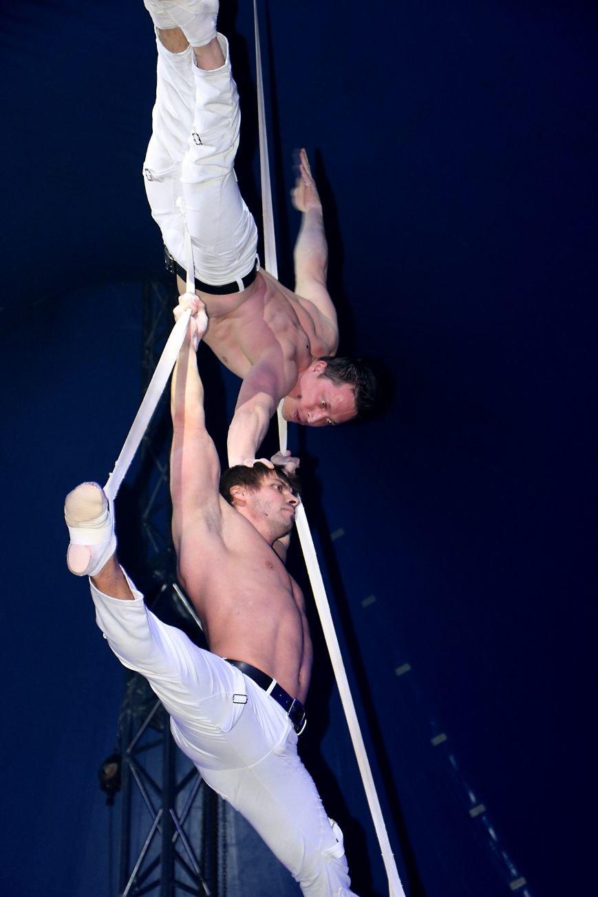 Итальянский цирк поражал мариупольцев слонами, тиграми и мужским акробатическим шоу (ФОТО, ВИДЕО), фото-2