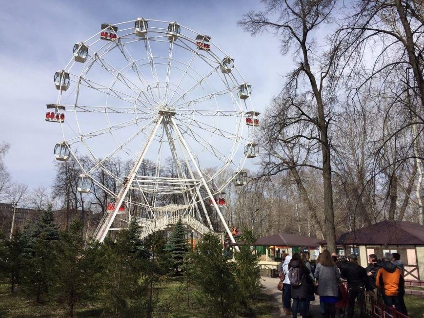 В Ульяновске заработало новое колесо обозрения. ФОТО, фото-1