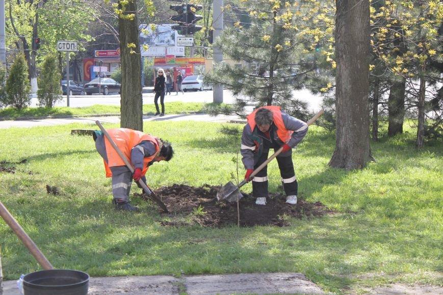 В Мариуполе молодожены высадили калину (ФОТО), фото-1