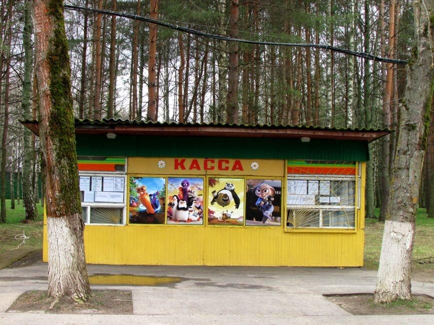В Новополоцке вышел из спячки парк культуры и отдыха. ФОТОФАКТ, фото-1