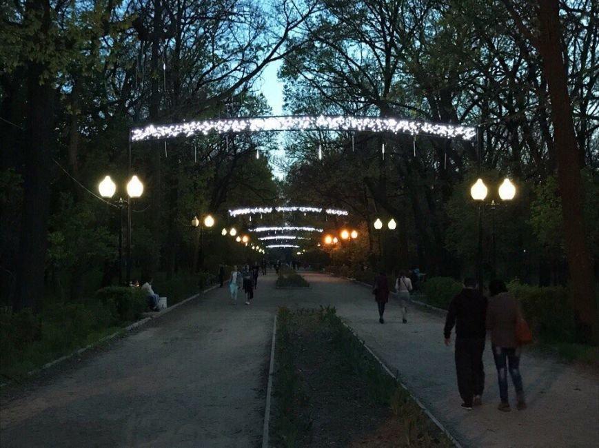 На главной аллее в парке появилось новое украшение, фото-1