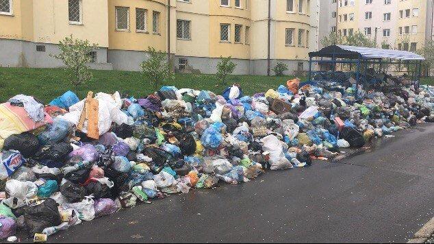 З вулиці Драгана вже близько місяця не вивозили сміття: відео та фото, фото-1