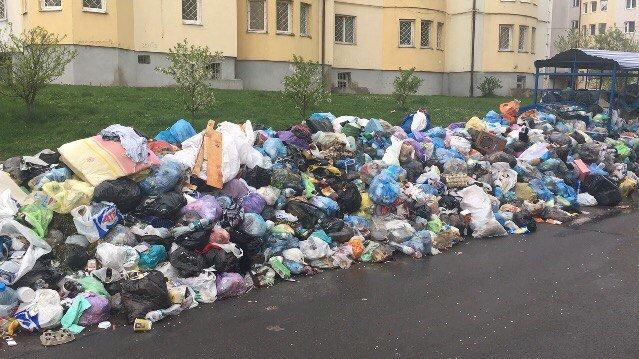 З вулиці Драгана вже близько місяця не вивозили сміття: відео та фото, фото-2