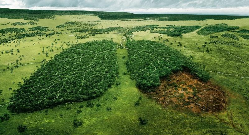 Сегодня Всемирный день борьбы с астмой, фото-1