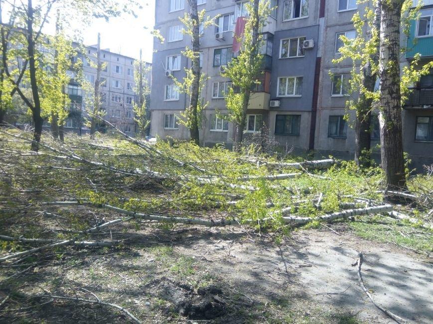 Спилить - спилили, а убрать забыли: в Покровске продолжается масштабная опиловка, фото-3
