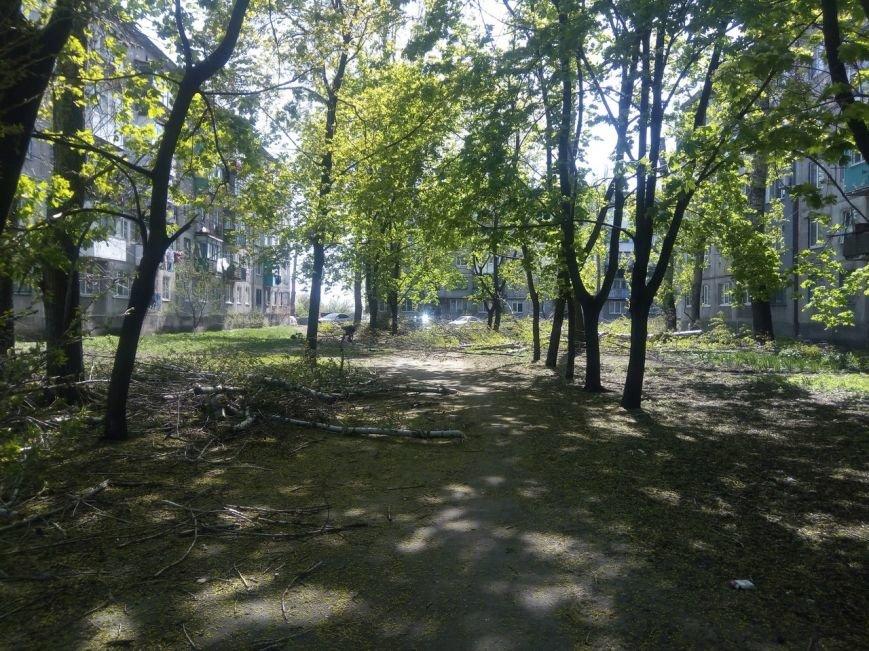 Спилить - спилили, а убрать забыли: в Покровске продолжается масштабная опиловка, фото-2