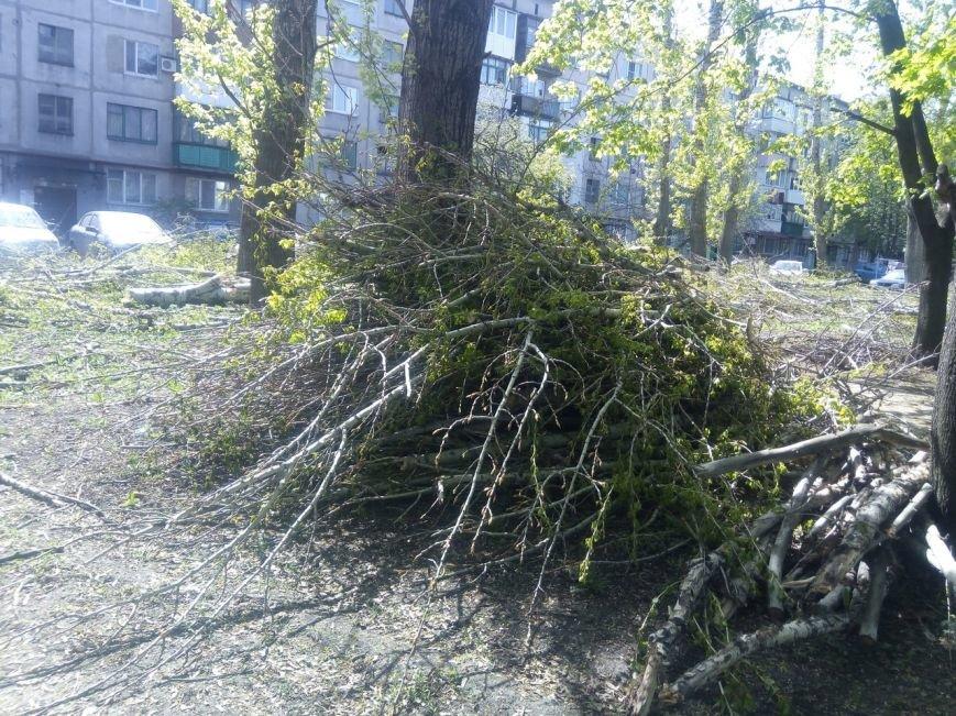 Спилить - спилили, а убрать забыли: в Покровске продолжается масштабная опиловка, фото-5