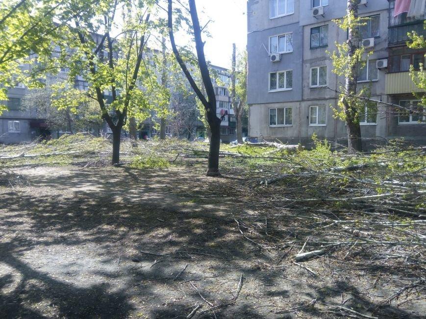 Спилить - спилили, а убрать забыли: в Покровске продолжается масштабная опиловка, фото-1