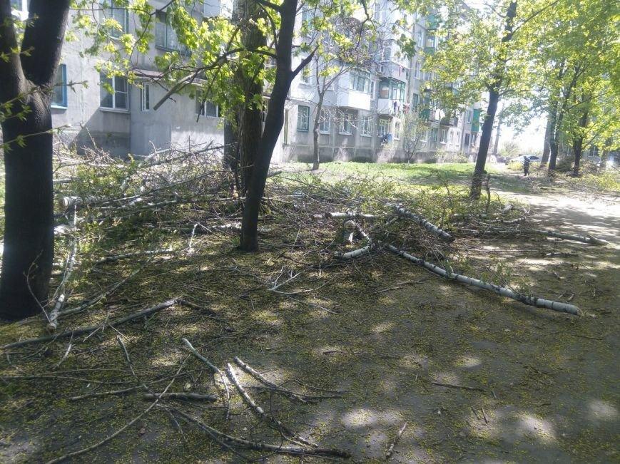 Спилить - спилили, а убрать забыли: в Покровске продолжается масштабная опиловка, фото-7
