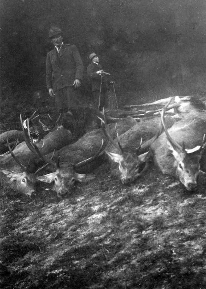Мисливці зі своїми трофеями в Карпатах. Ретро-світлини кінця 19 сторіччя. ФОТО, фото-1