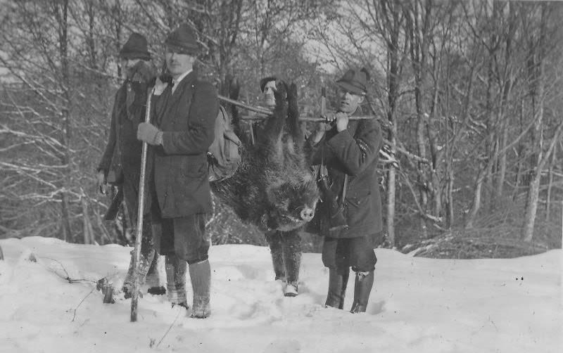 Мисливці зі своїми трофеями в Карпатах. Ретро-світлини кінця 19 сторіччя. ФОТО, фото-12