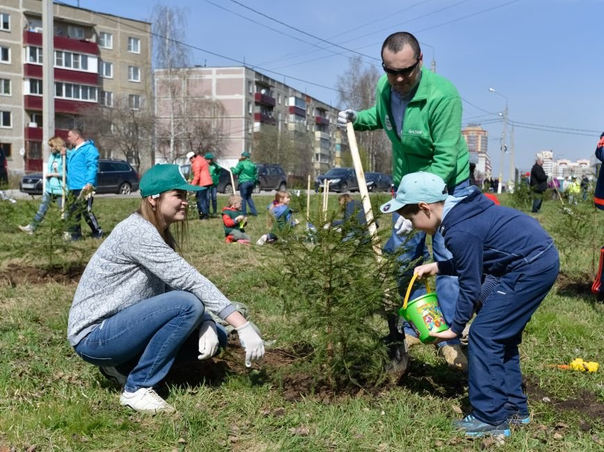 Акция «Лес Победы» в Домодедово, фото-3