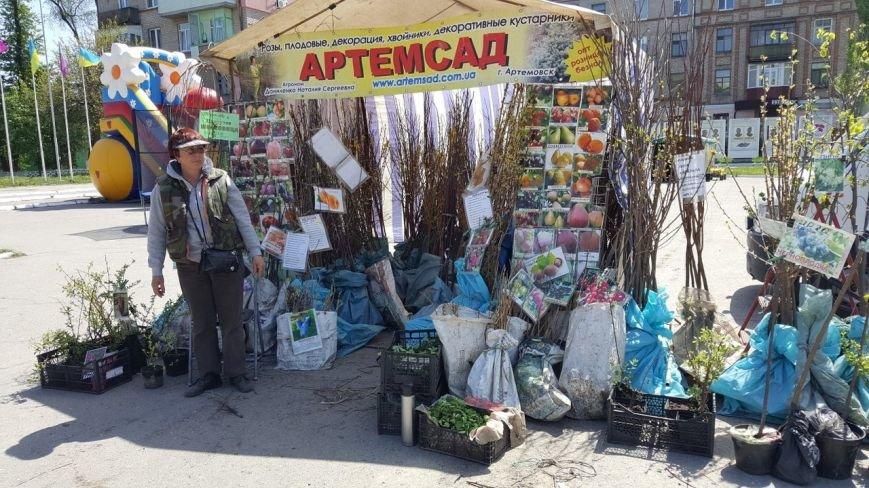 Новомосковск 0569 сад 4