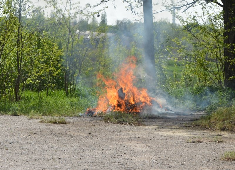 В Краматорске полицейские сожгли более 50 кг наркотиков, фото-1