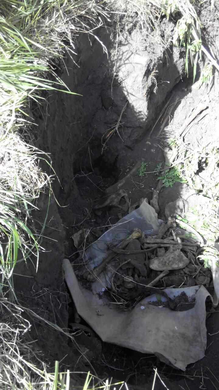 В Кременчугском районе найдены древние человеческие останки (ФОТО), фото-3