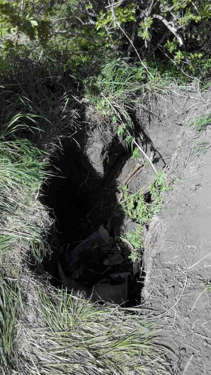 В Кременчугском районе найдены древние человеческие останки (ФОТО), фото-1