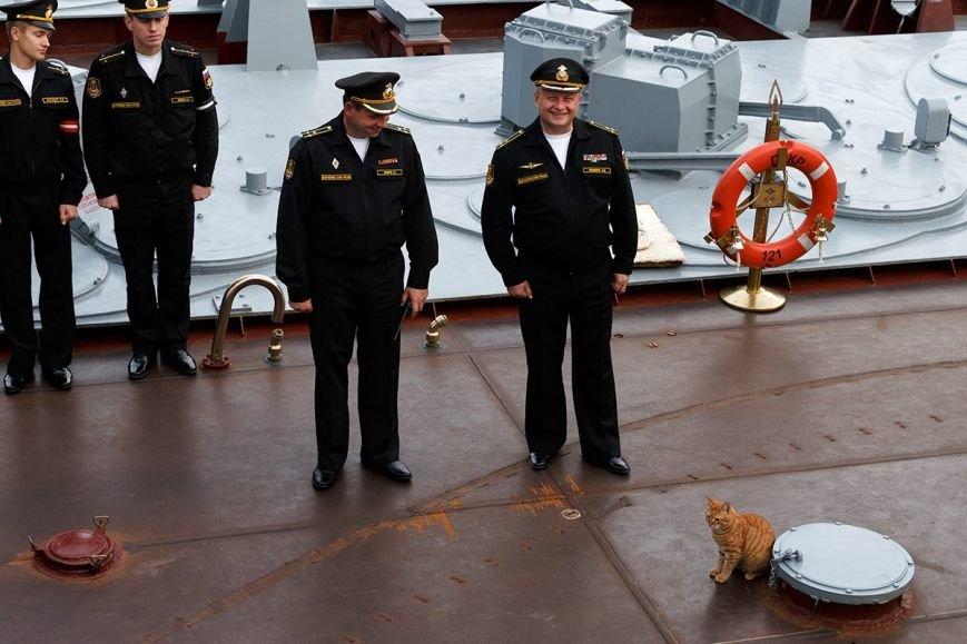 Севастопольский кот вместе с российскими кораблями ходил к берегам Сирии (ФОТО), фото-1