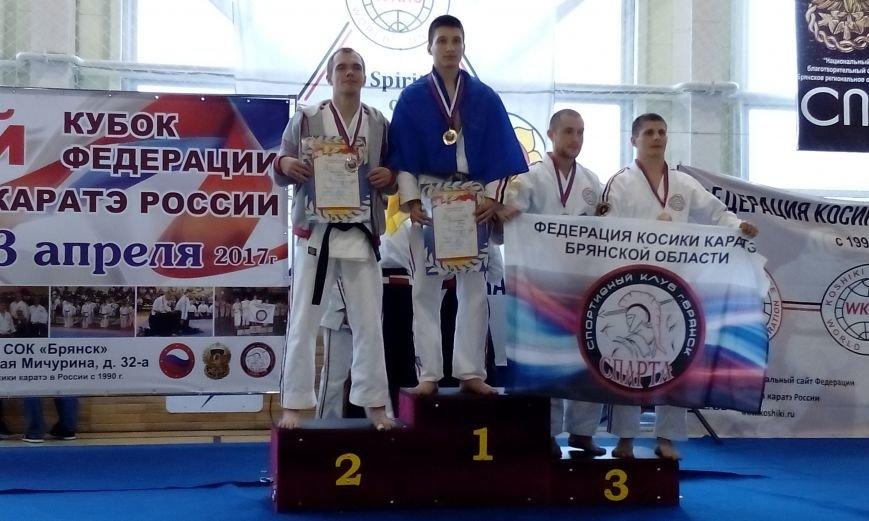 В Брянске каратисты из Покровска достойно выступили на Кубке Федерации Косики каратэ России, фото-7
