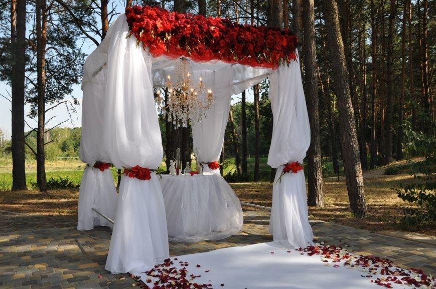 Свадьба вашей мечты в «ШишкiNN», фото-1