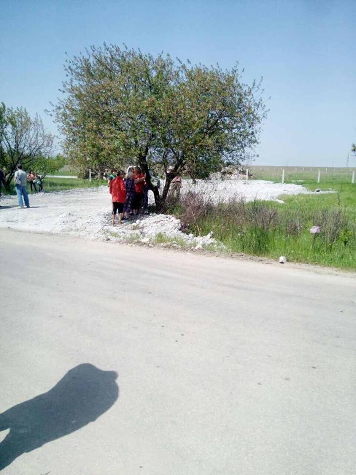 Жители поселка Украина выступили против строительства свинофермы (ФОТО), фото-3