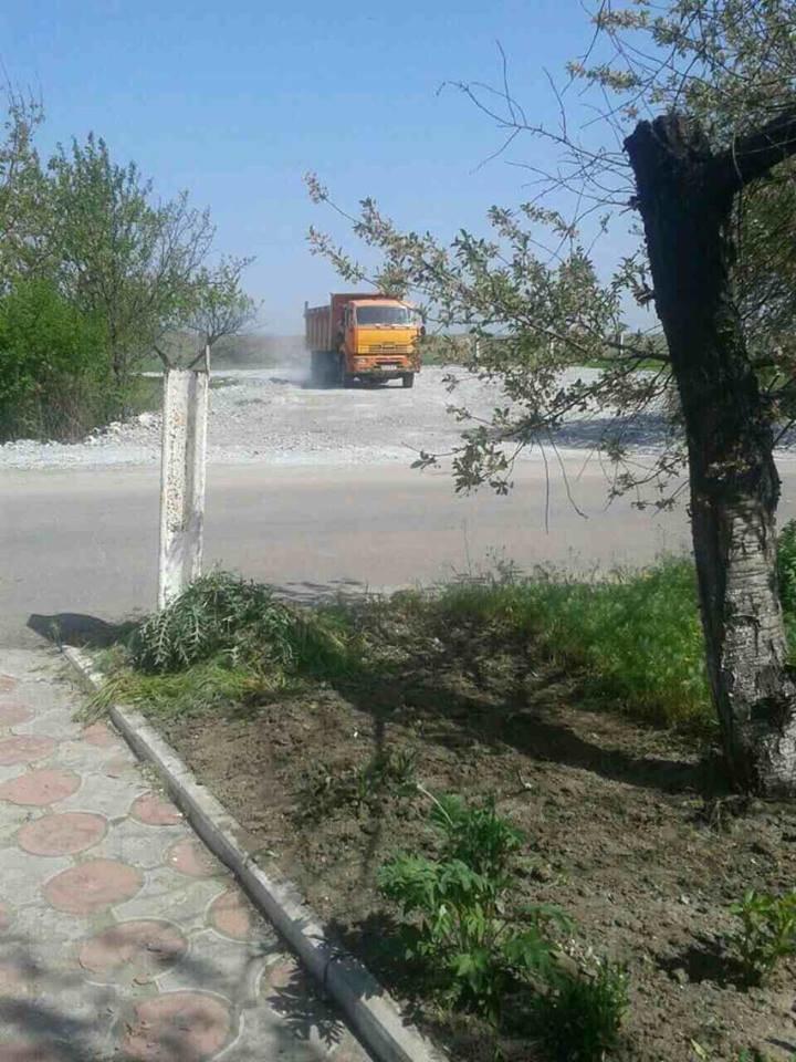 Жители поселка Украина выступили против строительства свинофермы (ФОТО), фото-2