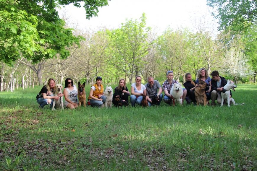 Завтра в Краматорске состоится выставка собак, фото-4