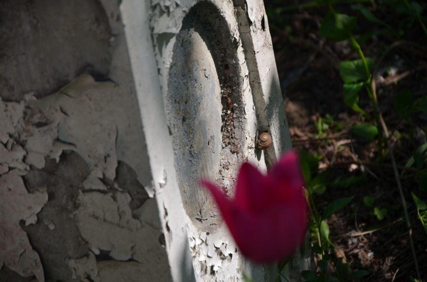 В Мариуполе разрушили памятник проукраинскому активисту Николаю Фененко, который был связан с ОУН (ФОТО), фото-6