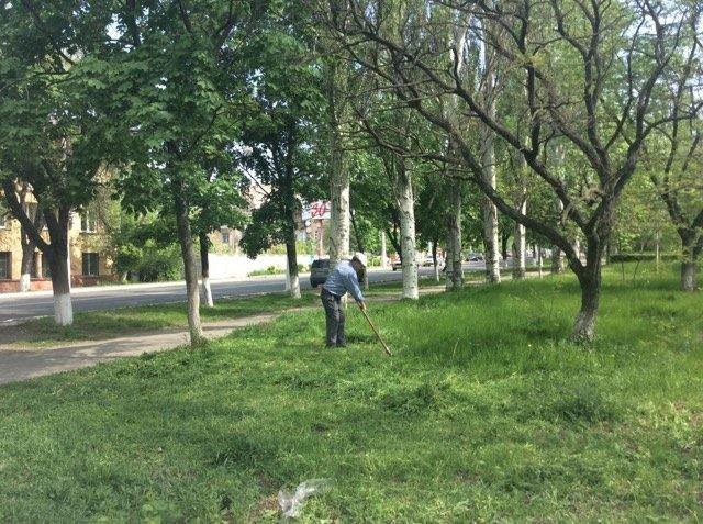 В Мариуполе будут наказывать за травостой более 10 сантиметров (ФОТО), фото-5
