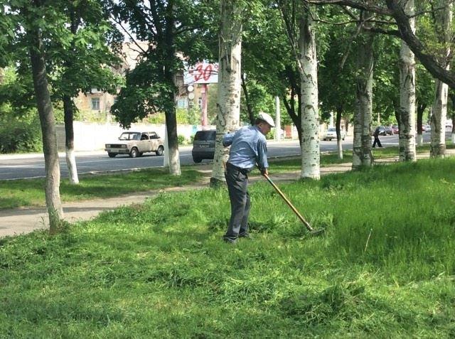 В Мариуполе будут наказывать за травостой более 10 сантиметров (ФОТО), фото-6