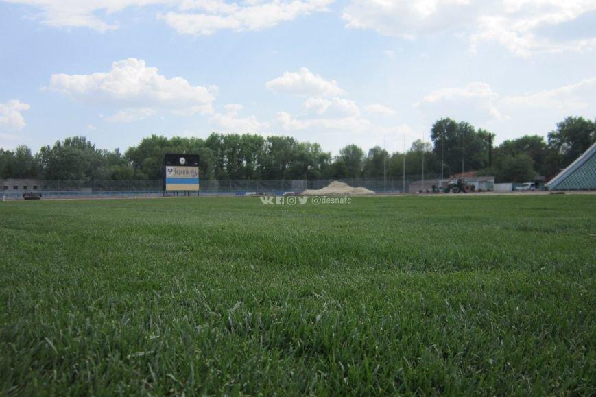 На стадионе «Чернигов» продолжается укладка нового газона. ФОТО, фото-4