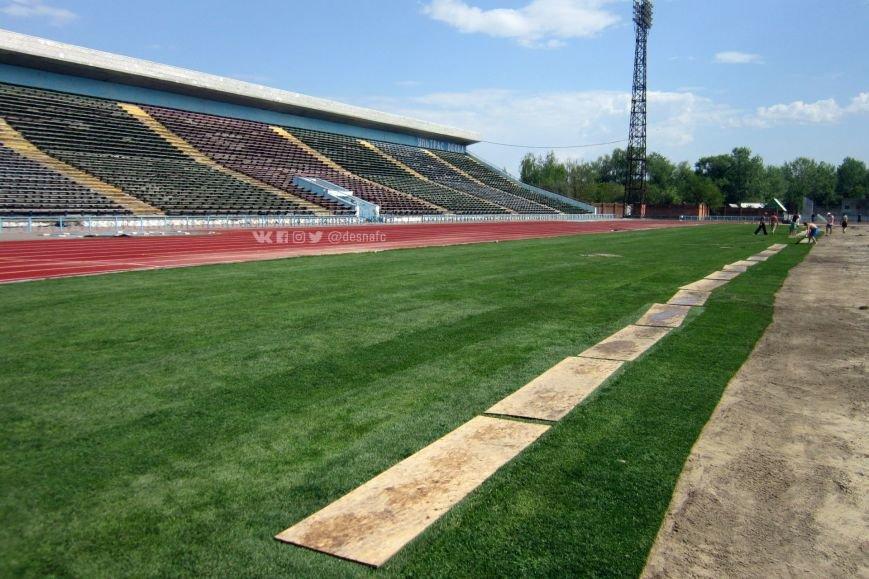 На стадионе «Чернигов» продолжается укладка нового газона. ФОТО, фото-5