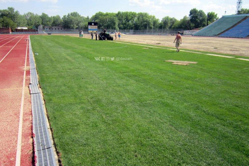 На стадионе «Чернигов» продолжается укладка нового газона. ФОТО, фото-2